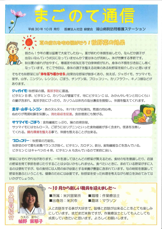 湖山病院訪問看護ステーション「まごのて通信」(平成30年10月)