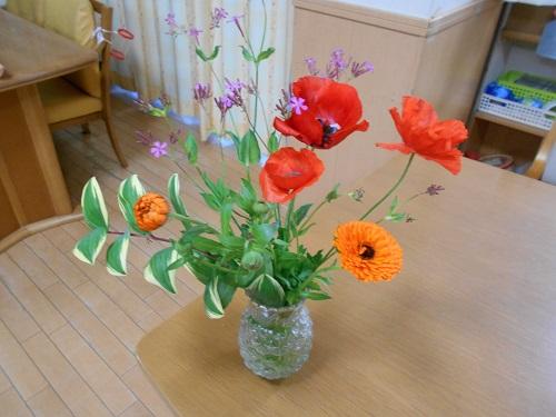 香紅の里 きれいな花✿