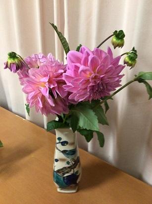 ゆらり 「季節の花ダリア🌼」